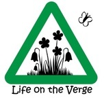 logo: Life on the Verge