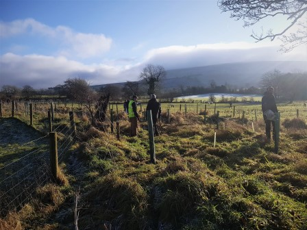 Tree planting near Downham under the slopes of Pendle Hill (Ribble Rivers Trust)