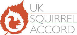 logo: Squirrel Accord