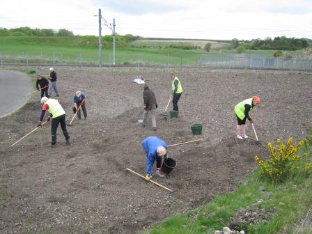 Meadow prep workday in May 2015 (Greener Greenways Scotland)