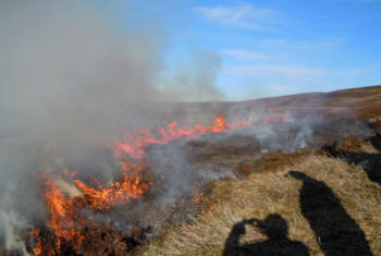 Prescribing burning at Moor House National Nature Reserve (University of Liverpool)