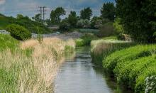 The River Ray is downstream from Swindon's large wastewater treatment plant (image: CEH)