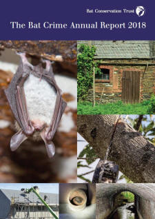 Cover of the Bat Crime Report 2018