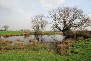 Whitchurch Pond (image: Jeff-Buck)