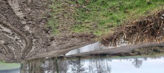 View of the clearance of the River Lugg, Herefordshire (image: The Wildlife Trusts)