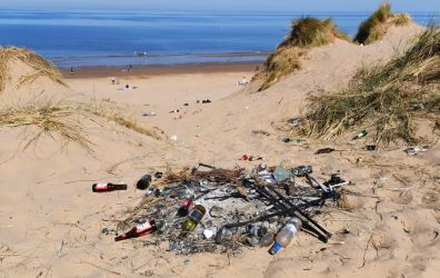 Formby Litter Copyright Colin Lane