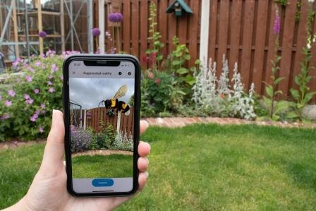 What's That Bee app in hand (Bumblebee Conservation Trust)