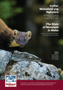 The State of Mammals in Wales report