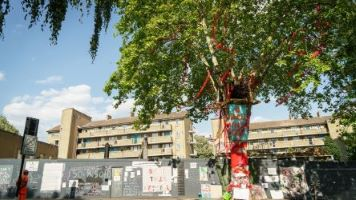 The Happy Man Tree is England's 2020 Tree of the Year winner. Credit: Tessa Chan / WTML