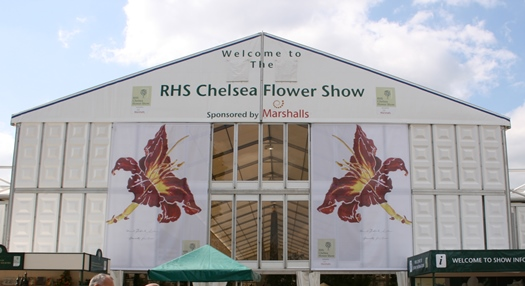 The Great Pavilion RHS Chelsea Flower Show 2008 (© Kerryn Humphreys)