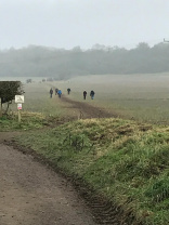 walkers in a field (CLA)