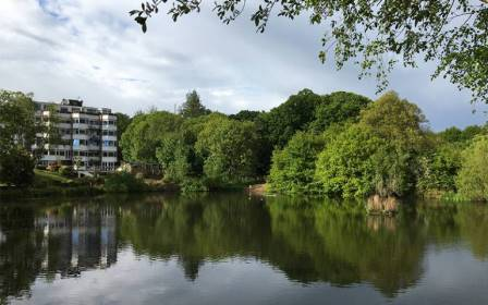 Hampstead Heath, London (UCL)