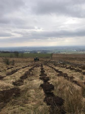 Continuous mounding (Scottish Forestry)