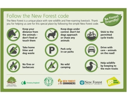 poster laying out the New Forest visitor code, photo courtesy of Forestry England