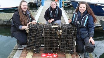 The Team adding oysters into the nursery
