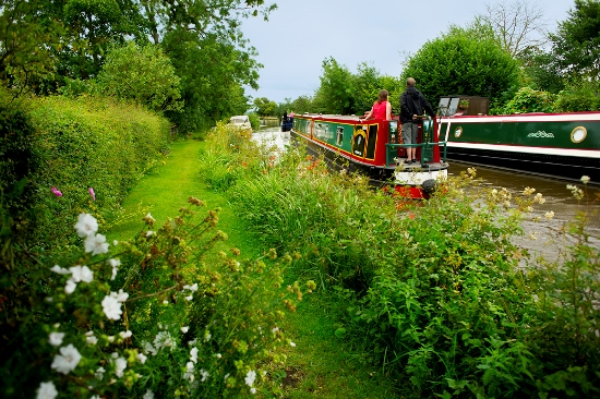 grassy towpath with wildflowers and a brightly colour barge on the canal
