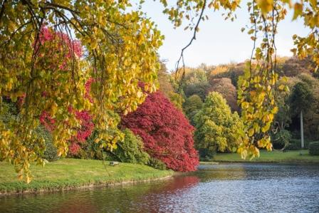 The vibrant autumn colours at the National Trust's Stourhead Estate (James Dobson)