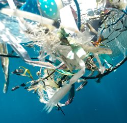 A tangle of plastic strips and rope floating in water
