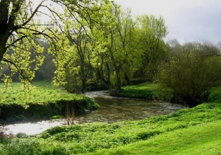 River Irk (Groundwork Greater Manchester)