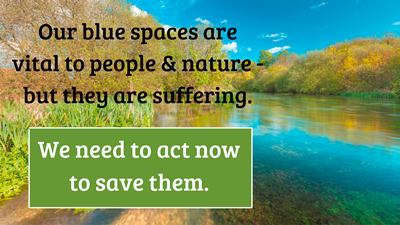 Our blue spaces are vital to people & nature but they are suffering image (Wildlife & Countryside Link)
