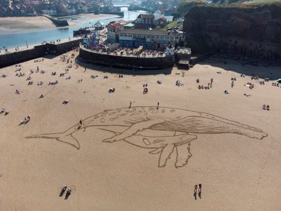 Sand drawing (image: Whale and Dolphin Conservation)