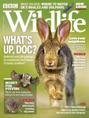 BBC Wildlife magazine cover