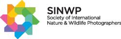 logo: WINWP