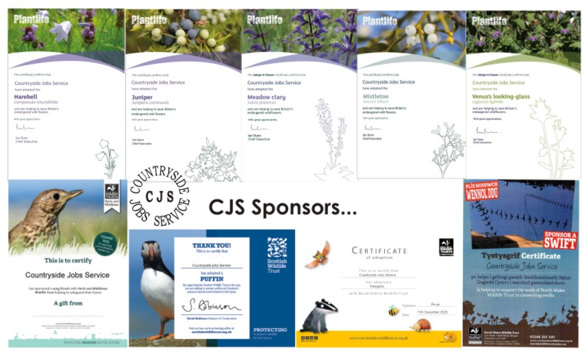 composite image of the various sponsorship certificates