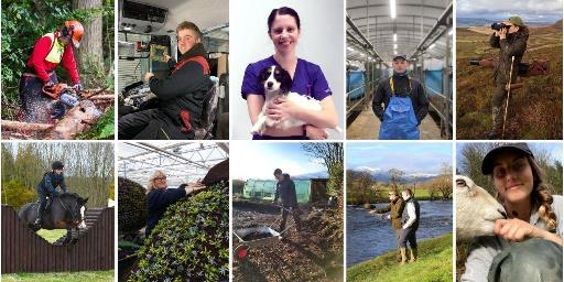 collage of people in different rural careers