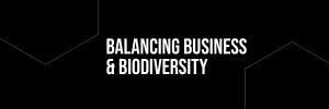 Logo: Balancing Business and Diversity