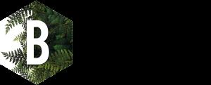 Logo: Biodiverse Consulting Ltd