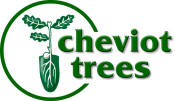 Logo: Cheviot Trees Ltd