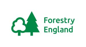 Logo: Forestry England