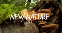 Logo: New Nature Magazine