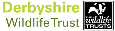 Logo: Derbyshire Wildlife Trust