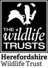 Logo: Herefordshire Wildlife Trust