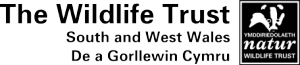 Logo: The Wildlife Trust of South and West Wales