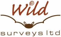 Logo: Wild Surveys Ltd