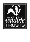 Logo: The Wildlife Trusts