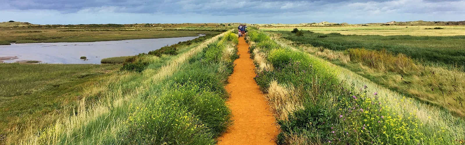 coastal path in the Norfolk fens (image: pexels on pixabay)