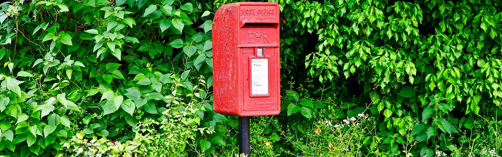 post box on an overgrown verge (image: MikesPhotos / Pixabay)