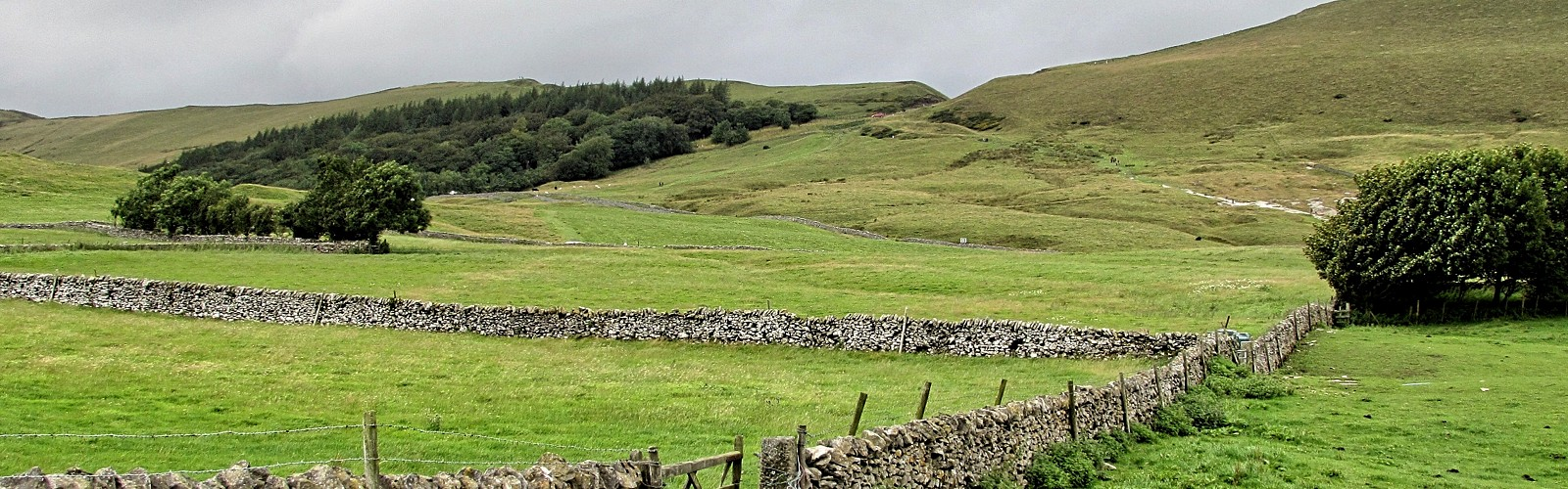 dry stone walls in Hope Valley (image: Magda V on unsplash)