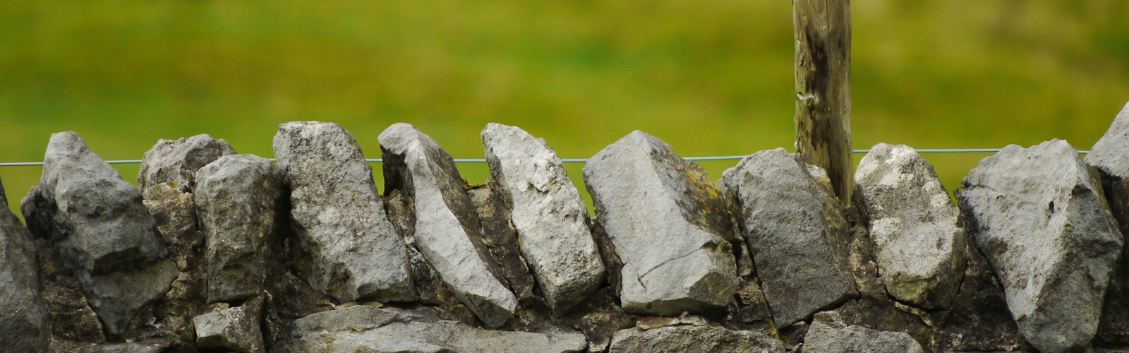 drystone wall toped by a fence with strand of plain wire (image: unsplash)