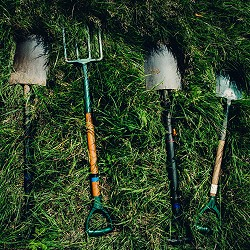 garden spades and fork in long grass (image: Dylan Nolte on unsplash)