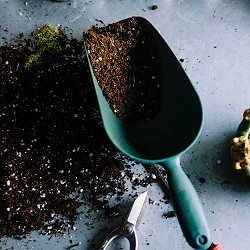 scoop filled with compost (image: Nesilhan Gunaydin on Unsplash)