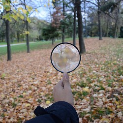 hand holding a magnifying glass in woodland (image: Kevin Ramirez / Pixabay)