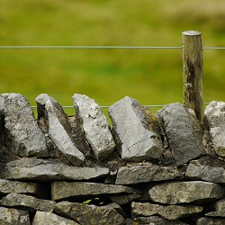 drystone wall with plain wire fence behind (image: unsplash)